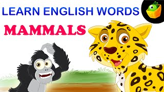 Mammals - Pre School - Learn English Words (Spelling) Video For Kids and Toddlers