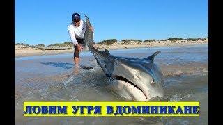 Как ловить в доминикане с берега