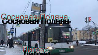 От Сосновой Поляны до Лигово на 163 Автобусе борт №329