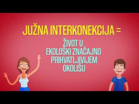 Gasovod Južna interkonekcija kroz BiH