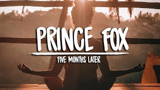 Prince Fox   Five Months Later