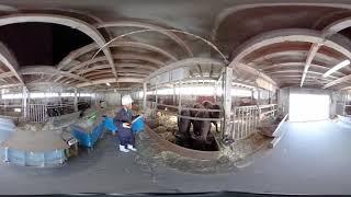 秋田県立大学 大潟キャンパス 牛舎01