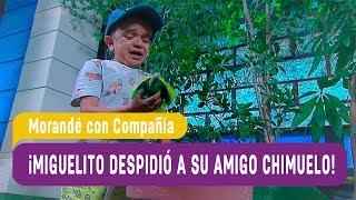 ¡Miguelito despidió a su amigo Chimuelo! - Morandé con Compañía 2019