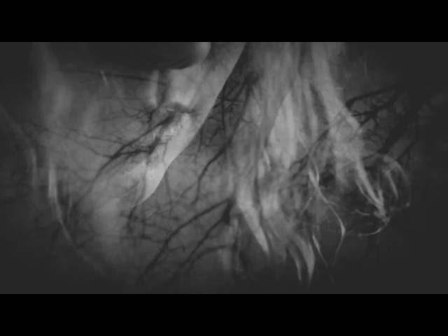 The Darkling Air - The Darkling Air