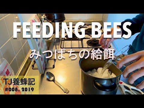 ", title : 'みつばちの給餌 3月 (""Feeding Bees"")"