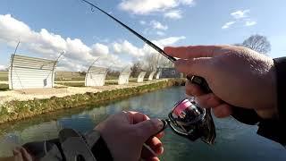 Прудовая рыбалка в крыму