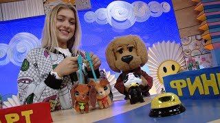 """Игрушки """"Furreal - Игроблог с Каркушей - Обзор игрушек для детей"""