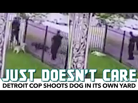 Detroit Cop Shoots Dog In Its Own Yard