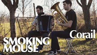 SMOKING MOUSE // Corail