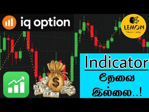Skambučių pardavimo pasirinkimo sandoriai indijos akcijų rinka