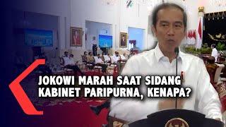 Jokowi Marahi Para Menteri Saat Sidang kabinet Paripurna, Apa Isinya?