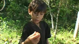 A gente luta  - Trailer / We struggle  (Ashaninka)