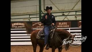 Show Horse Training Tip from World Champion Trainer, Shane Dowdy