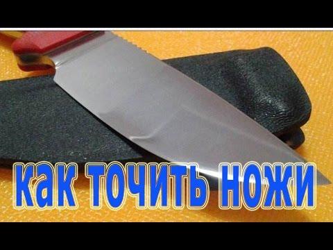 P_slyaoperats_yniya per_od a uno sciame di haemo