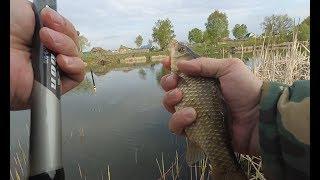 Правила ловли рыбы весной в рязанской области