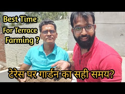 टेरेस पर गार्डन का सही समय? | Best Time For Terrace Farming/Gardening | Plants for Terrace Garden