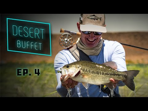Desert Buffet - Bass Fly Fishing & UNDERWATER Bluegill Action!!!