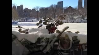 Winter Wonderland 2013