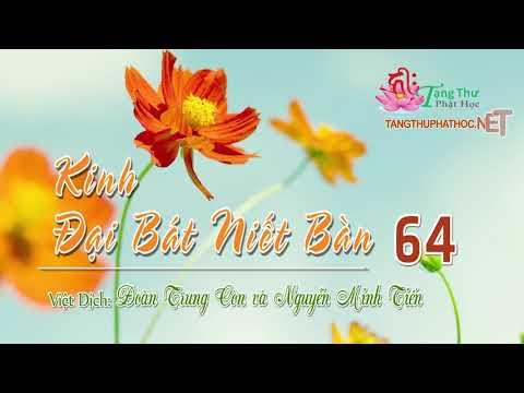 10. Phẩm Bồ Tát Quang Minh Biến Chiếu Cao Quý Đức Vương Phần 6 -2
