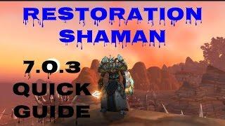 verstärkung schamane guide