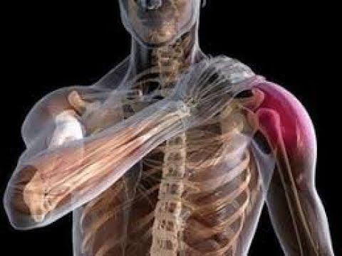 Для чего нужен корсет при остеохондрозе