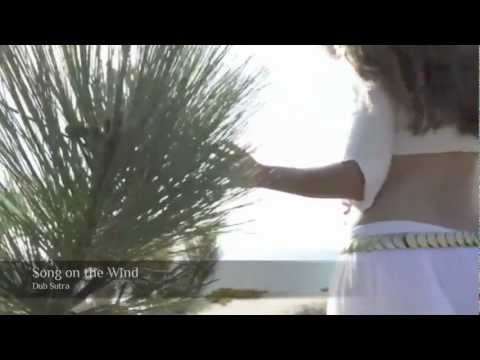"""Official """"Song on the Wind"""" Music Video by Dub Sutra"""