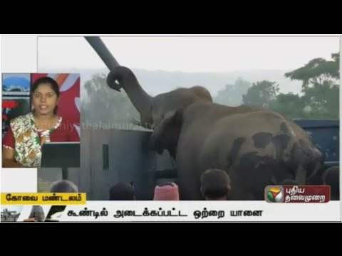 A-Compilation-of-Coimbatore-Zone-News-05-04-16-Puthiya-Thalaimurai-TV