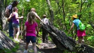 Basics of Hiking with Kids