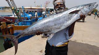 KING SHEELA FISH Prepared by my daddy Arumugam / Village food factory