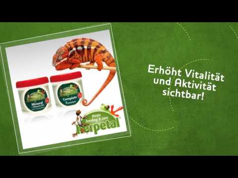 Herpetal Starterkit: Vitamine und Mineral - reptilienkosmos.de