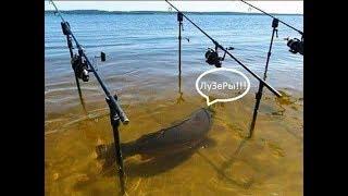 Рыбалка в каратаево весна 2020 ростов