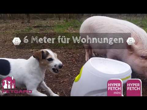 Hyper Fetch Ballwurfmaschine