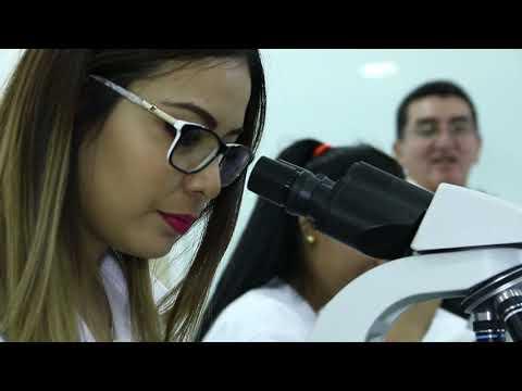 medicina microscopios