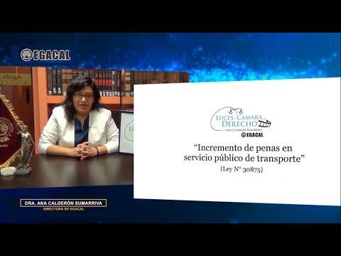 Programa 104 - Incremento de penas en servicio público de transporte - Luces Cámara Derecho - EGACAL