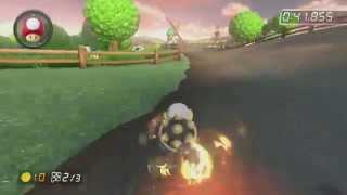 [MK8] Wii Moo Moo Meadows - 1:22.259