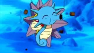 Horsea  - (Pokémon) - Pokemon Misty feeds Starmie,Horsea,Psyduck, and Togepi