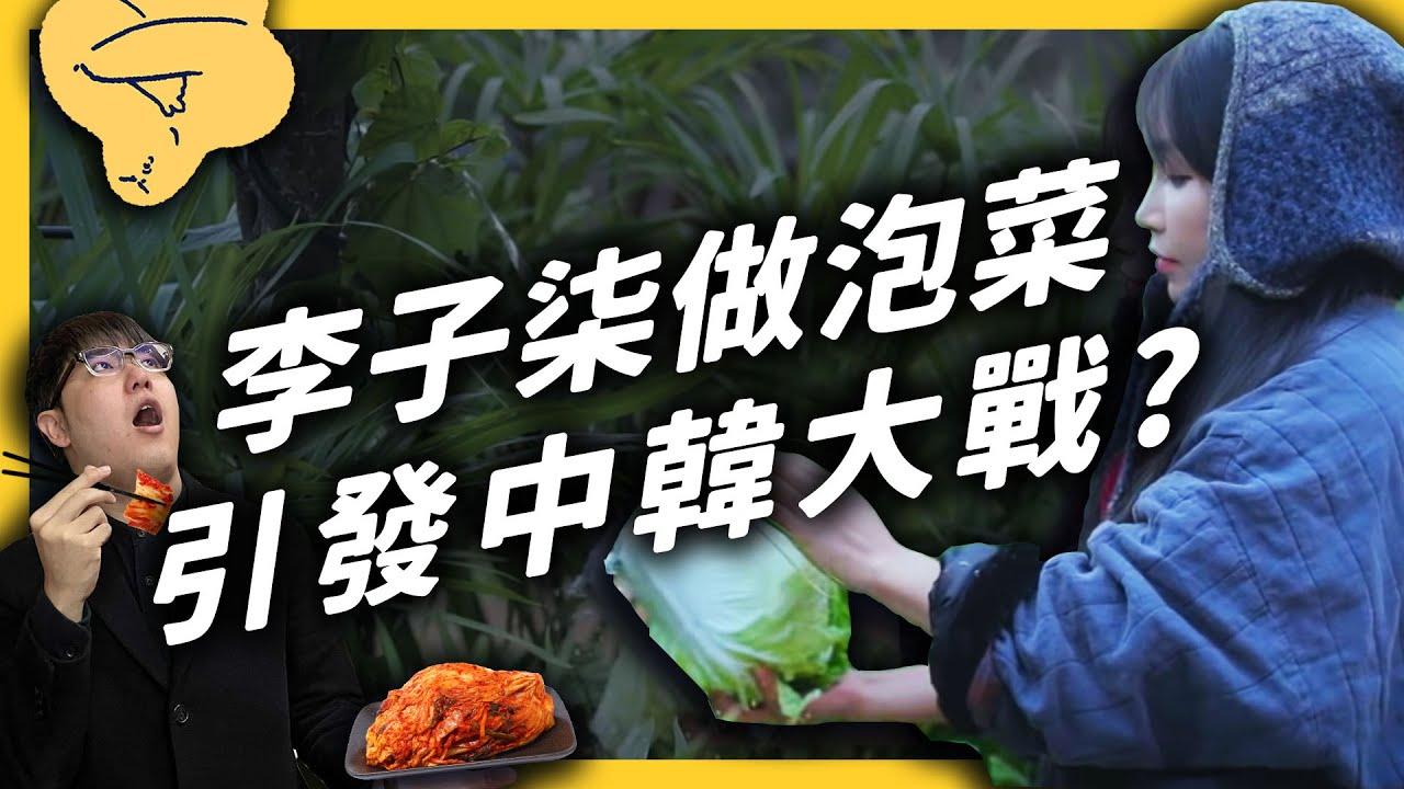 中國的千萬 YouTuber 李子柒,為何被韓國網友出征?中韓泡菜大戰到底在戰什麼?《食物知識大拼盤》EP010|志祺七七