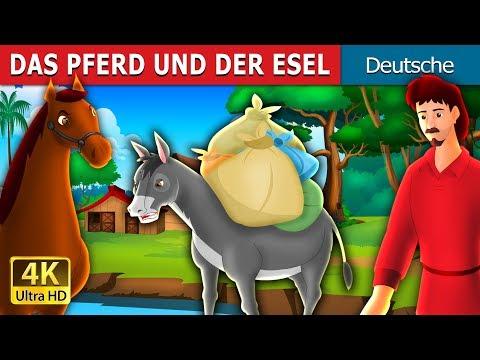 DAS PFERD UND DER ESEL | Gute Nacht Geschichte | Deutsche Märchen