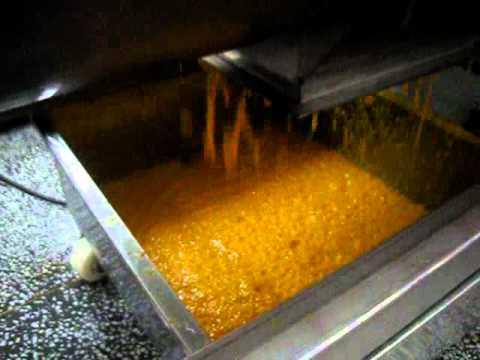 Mango Juice Extractor