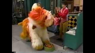 Sesame Street: Barkley's Birthday (1994)