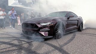 Ford Mustang 5.0 V8 Royal Crimson GT - BRUTAL Revs, Burnout, Accelerations!