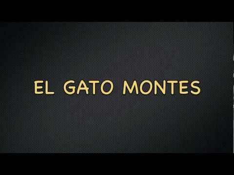 El Gato Montes- Manolo Escobar