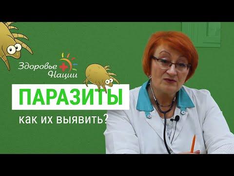 18 признаков наличия паразитов в организме (врач-иммунолог)