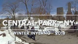 8K 360 VR CENTRAL PARK 2018 - NEW YORK SNOW WINTER NEVE INVERNO - 17 SCENES