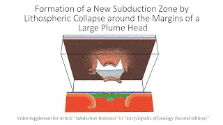 Formation of a New Subduction Zone by Lithospheric Collapse around the Margins of a Large Plume Head