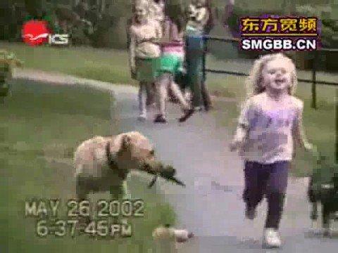 Hondenfillumpje