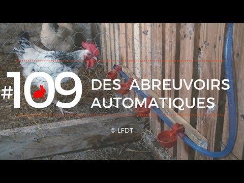 DES ABREUVOIRS AUTOMATIQUES │LFDT #109