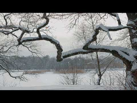 """Tombe la neige"", Salvatore Adamo, with lyrics"