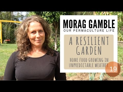 A Resilient Garden: Home Food Growing in Unpredictable Weather with Morag Gamble