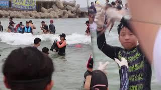 천진해수욕장 오징어잡기체험 이미지